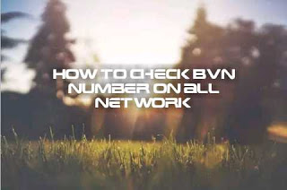 Easy ways to check your BVN using your phone