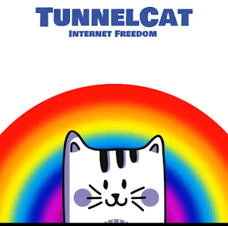 Vodafone Free browsing trick   TunnelCat VPN 2019